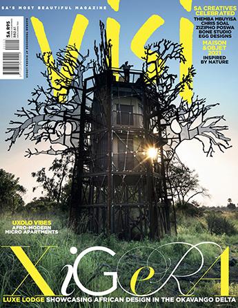 VISI-issue-113